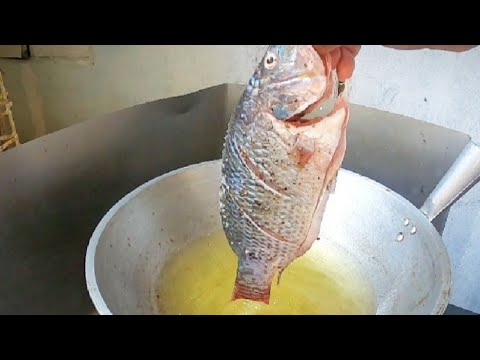 Tips For Beginner | How To Perfectly Fry Tilapia | Golden Crispy And Yummy Tilapia Recipe!!