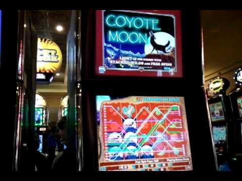 Coyote moon slot machine bonus russian roulette tattoo