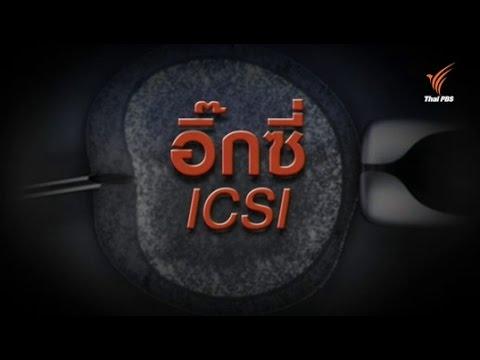 """คำในข่าว : """"อิ๊กซี่"""" (ICSI)"""