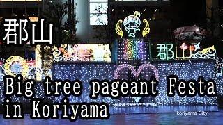 郡山駅前のイルミネーション  Big tree pageant Festa IN KORIYAMA 2018