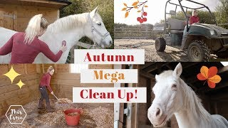 Autumn/Fall Massive Equestrian Clean up Routine of the Stables/Barn *Satisfying* | This Esme