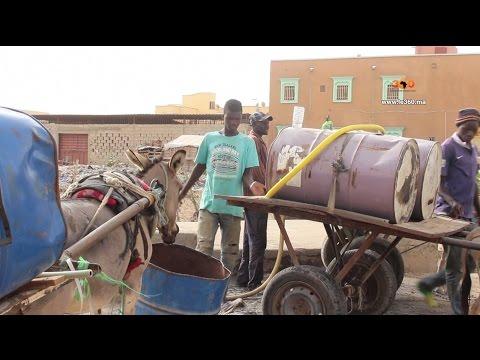 Le360.ma • Les charretiers de Nouakchott survivent à la modernité