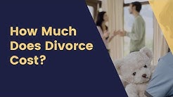 Houston Divorce Lawyer Cost & Fees - Affordable - Low Cost - Flat Fee