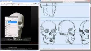 74   Digital Painting   Why Draw Skulls