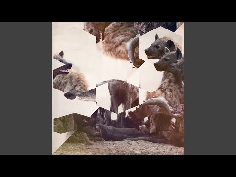 The Wish (Manoo Darkside Remix)