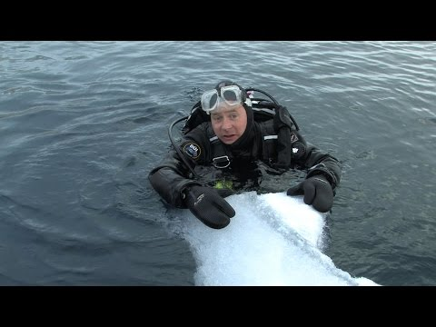 Diving Antarctica! | JONATHAN BIRD'S BLUE WORLD