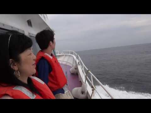 Япония. Морское сафари на Тихом океане у самой южной точки полуострова Босо мысе Инубодзаки