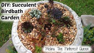 Diy: Build Your Own Succulent Birdbath