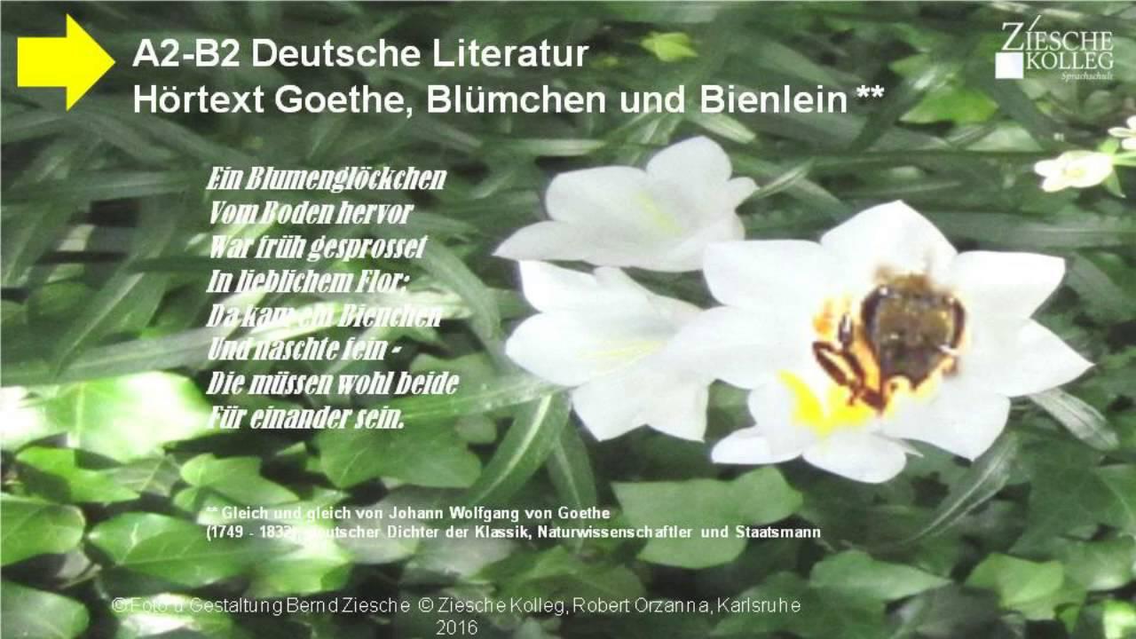 A2 B2 Textproduktion Gedicht Goethe Gleich und Gleich