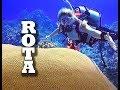 MelodeeSea - Scuba diving the Rota Coral Gardens
