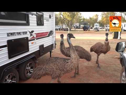 RAC Exmouth Caravan Park - Exmouth, Western Australia