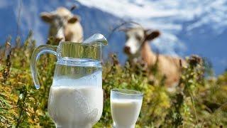 Как выбрать настоящее молоко?(, 2016-03-09T14:16:18.000Z)
