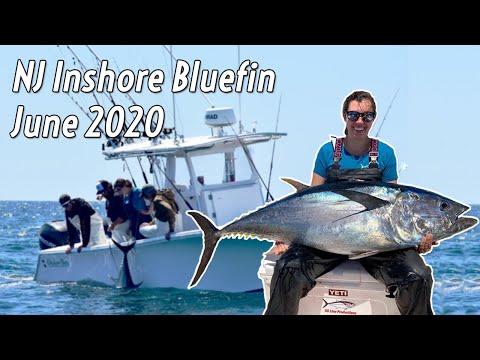 NJ Inshore Bluefin Tuna - June 2020