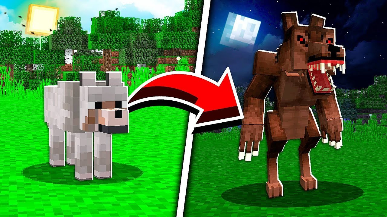 How to Turn a Wolf into a Werewolf in Minecraft at 8:8 AM!