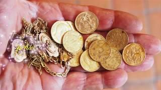 Trésor en pièces d'or  dans un bois.Treasure in gold coins in a wood