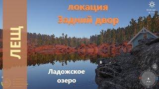 Русская рыбалка 4 - Ладожское озеро - Лещ за кафе  Bream