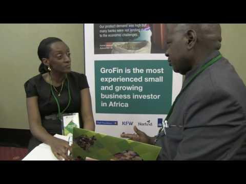 [PAINT] Meet GroFin - Investor