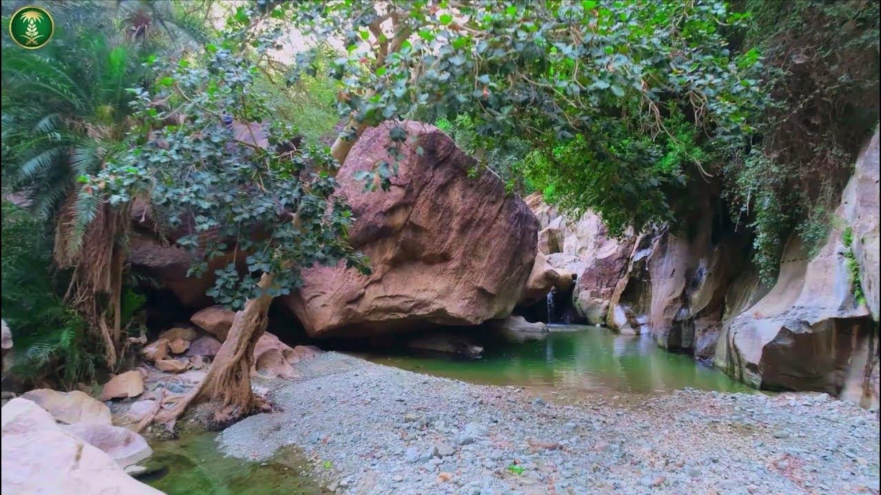 منتزه وادي لجب الوطني بمنطقة جازان Youtube