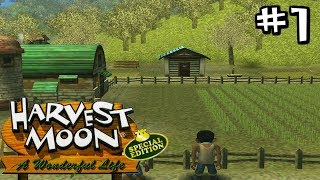 MY FAVE GAME OF ALL TIME!| Harvest Moon: A Wonderful Life (Part 1)