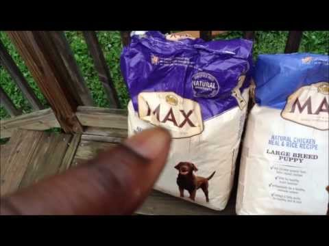 how-i-feed-my-dogs