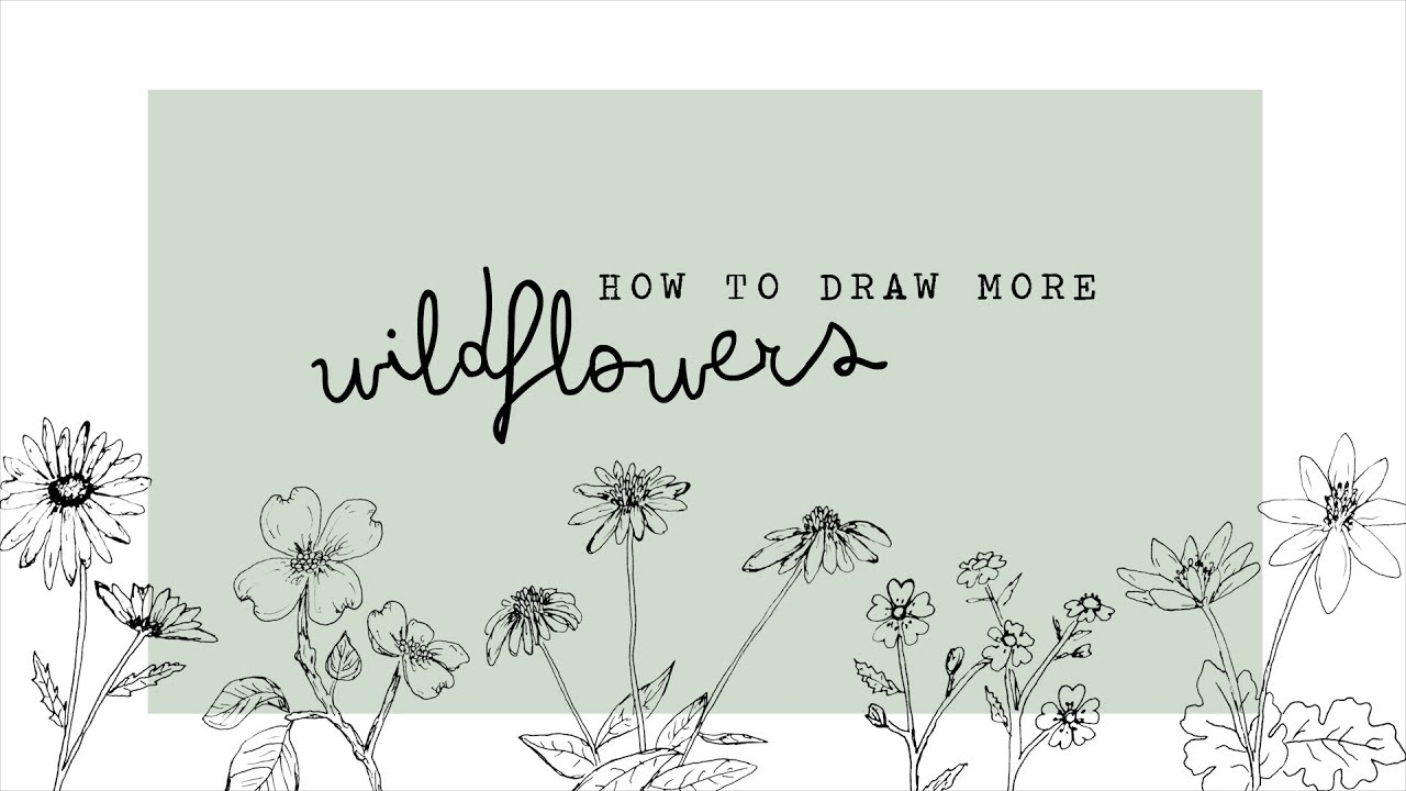 How To Draw More Wildflowers Youtube