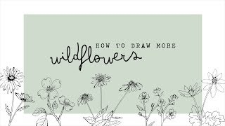 how to draw more wildflowers