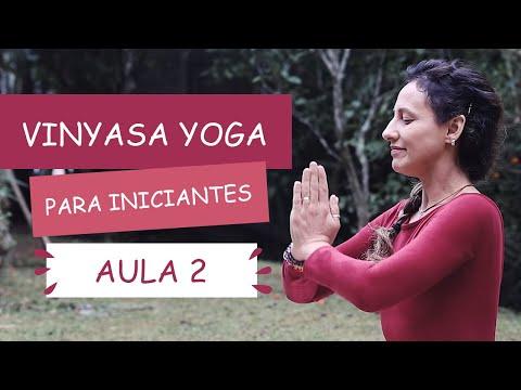Aula 2 - Vinyasa Yoga para Iniciantes | Fernanda Cunha Yoga