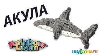 АКУЛА из резинок Rainbow Loom Bands. Урок 311 | Shark Rainbow Loom