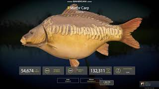 Russian Fishing 4 l Bear Lake l 2x Carp Trophies !!