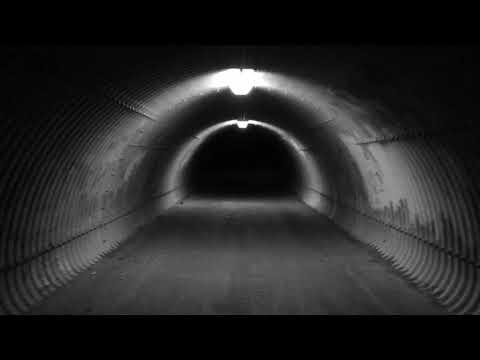 Secret Chiefs 3 - The End Times (Music Video)