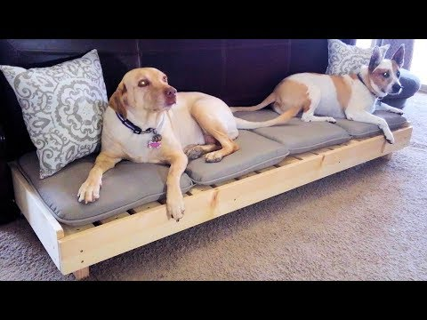modern-platform-dog-bed---large-dog-bed-//-diy-how-to
