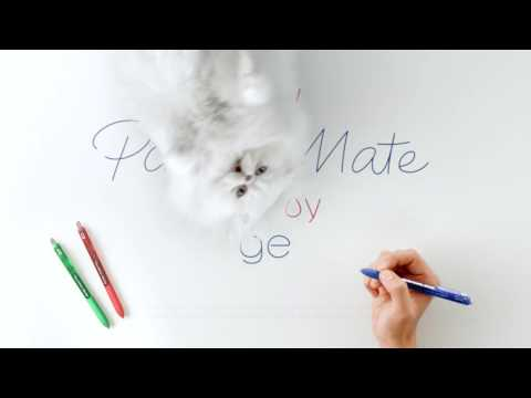 Paper Mate InkJoy Gel Pens - Cat