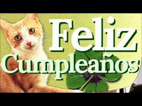 Feliz cumpleaños con gatos - ¡QUE PASES UN DÍA INCREÍBLE!