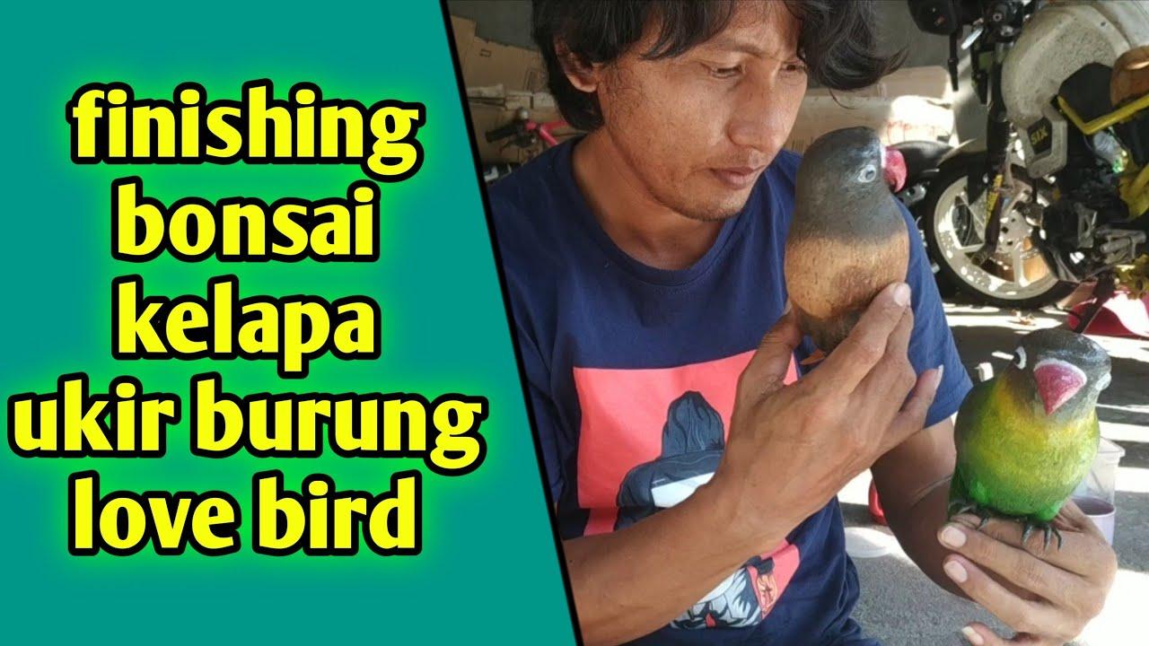 Rahasia Finishing Bonsai Kelapa Ukir Burung Love Bird Youtube