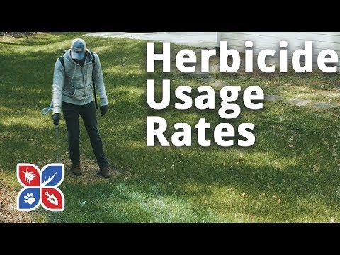 Herbicide Usage Rates - Lawn Care Tips | DoMyOwn.com