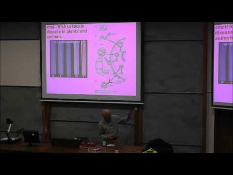 Small RNA, The Dark Matter of Genetics - by Professor Sir David Baulcombe