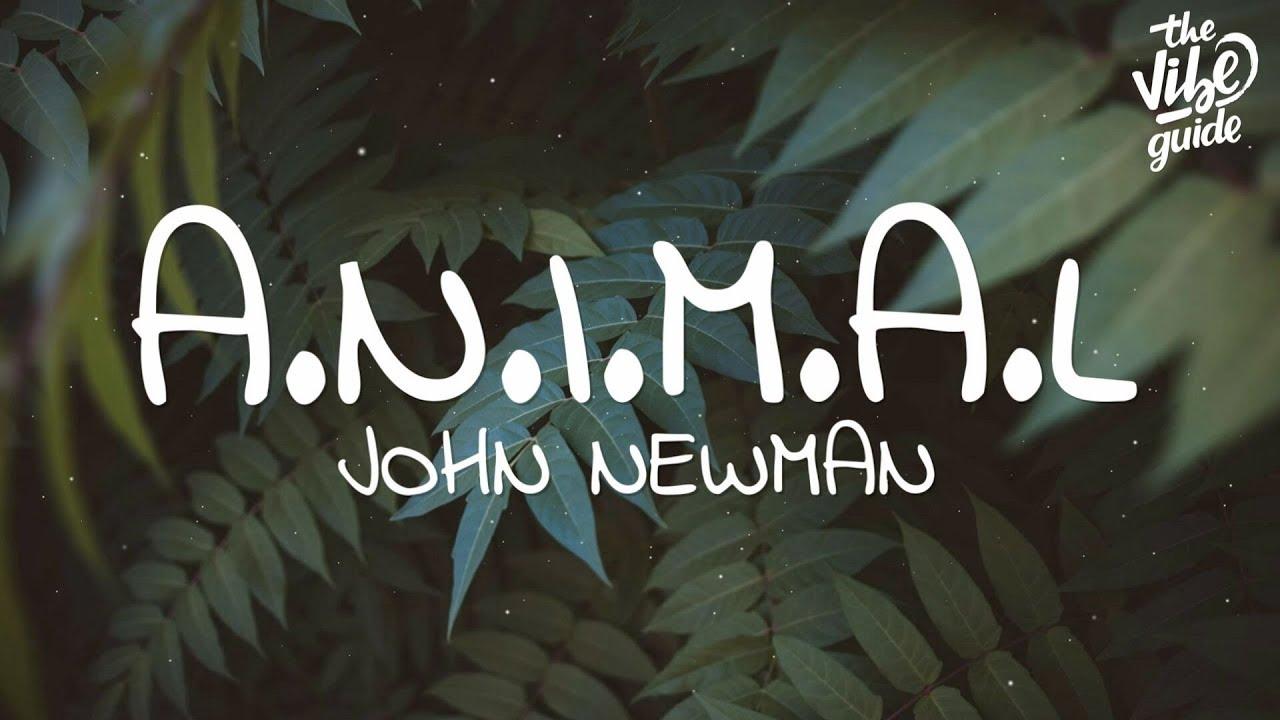 John Newman - A.N.i.M.A.L (Lyrics)