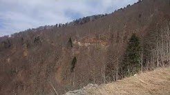 promenade vallée de barousse pendant la récolte sève de bouleau