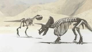 Tyrannosaurus Rex vs. Triceratops thumbnail