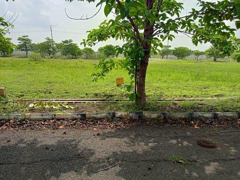 72)-200-sq.-yards-plot-[22-lakhs]-at-buddavaram,-near:-gannavaram,-vijayawada;-east-face;-9989057856