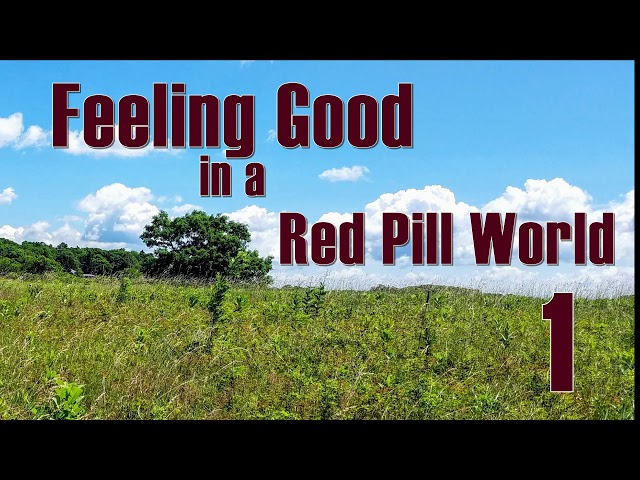 Feeling Good in a Red Pill World