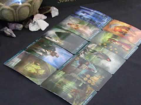 ~The Daily Vibe~A Major Transition~Sunday, 0617~June 18 Daily Tarot Reading