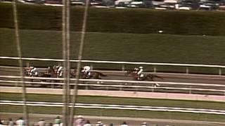 1986 Breeders' Cup Classic