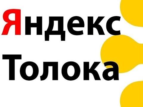 Яндекс толока заработок без вложений 2019