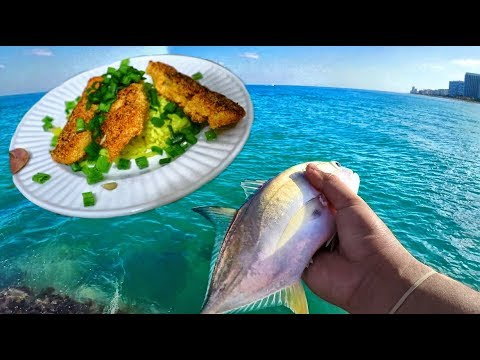 Catch And Cook JACK CREVALLE! Trash FISH - SUPRISING Outcome!