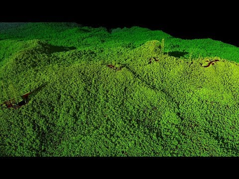 3-D Views of Puerto Rico's Forests After Hurricane Maria