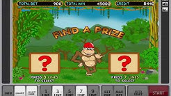 Biggest Win On The Crazy Monkey Slot Machine - Bonus Game