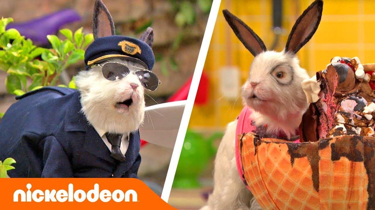 Грозная семейка | Лучшие моменты с Доктором Колоссо, часть вторая ? | Nickelodeon Россия