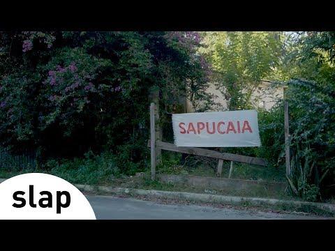 Silva - Sapucaia Álbum Brasileiro