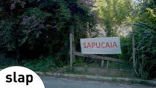 Silva - Sapucaia (Álbum Brasileiro)